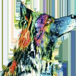 Villa Bunter Hund